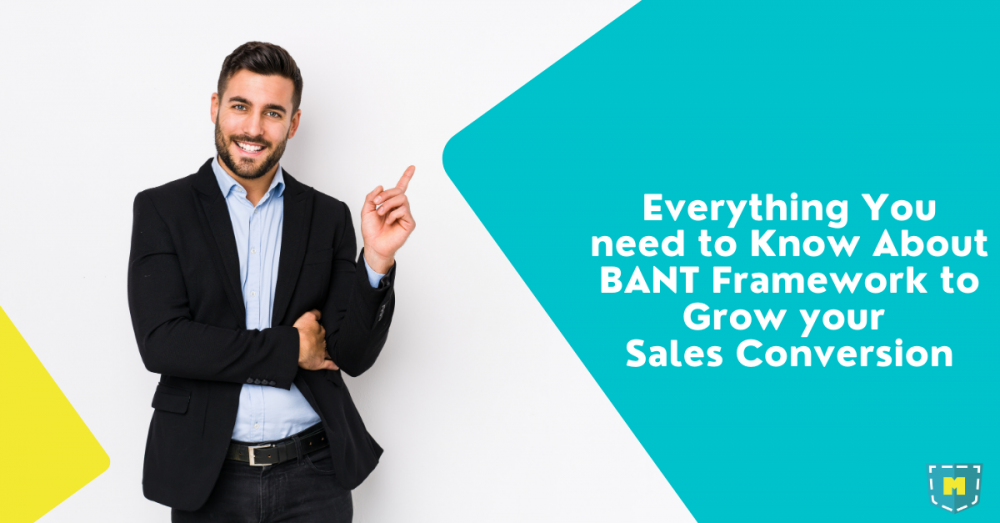 Everything You need to Know About BANT Framework to Grow your Sales Conversion